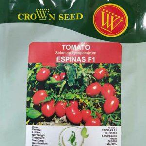 بذر گوجه فرنگی اسپیناس