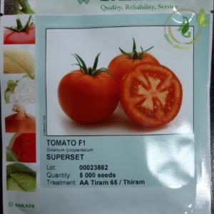 بذر گوجه فرنگی هیبرید سوپرست