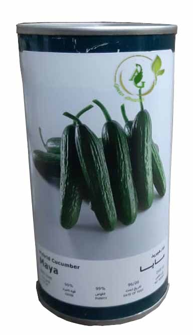 بذر خیار هیبرید مایا فلات