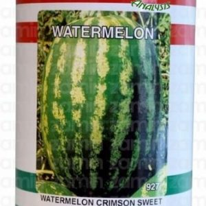 بذر هندوانه استاندارد کریمسون سوئیت ناسکو