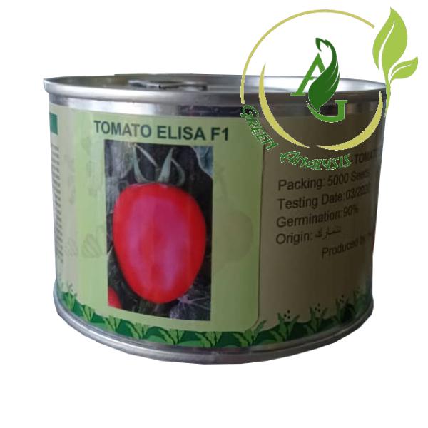بذر گوجه فرنگی هیبرید الیسا